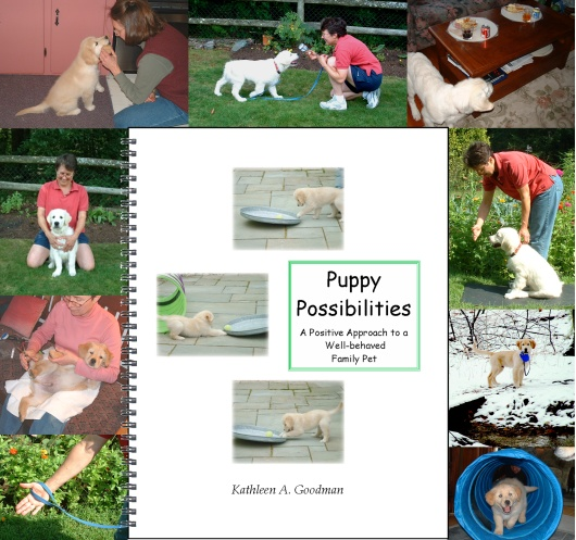 Puppy Possibilities Flyer